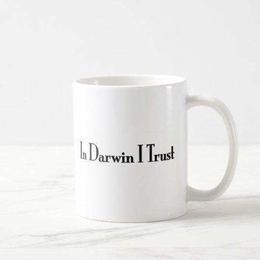 En la confianza de Darwin I Tazas