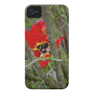 En la floración funda para iPhone 4