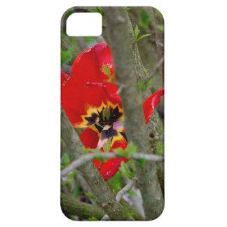 En la floración funda para iPhone SE/5/5s