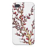 En la floración iPhone 4 protectores