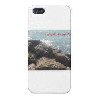En la gloria de todo el dios iPhone 5 fundas