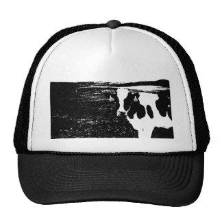 En la granja gorra
