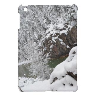 En la manera de conectar en cascada la garganta Du iPad Mini Protector