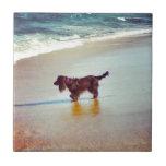 En la playa azulejos
