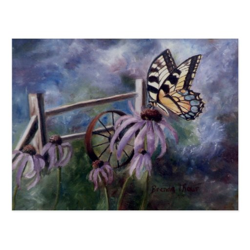 En la postal de la mariposa del jardín
