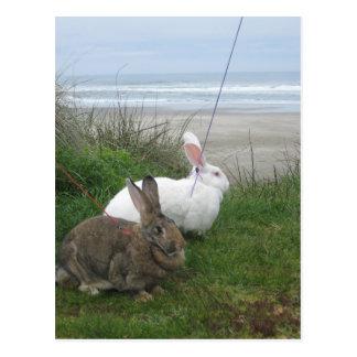 En la postal de la playa