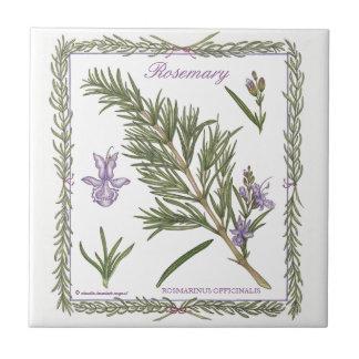 En la teja de Rosemary del ~ del jardín