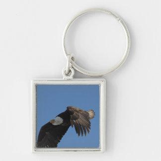 En las alas de Eagle Llavero Cuadrado Plateado