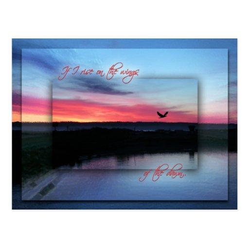 En las alas del amanecer tarjetas postales