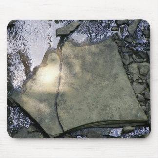 En las rocas alfombrilla de ratones