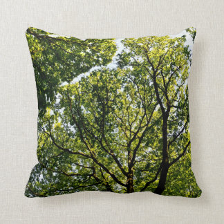 En los árboles almohada