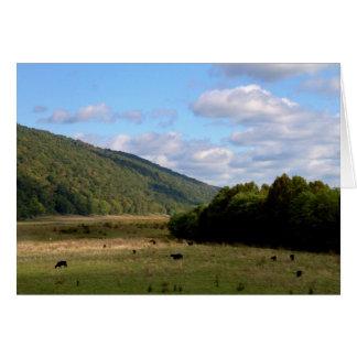 En los caminos traseros de Virginia Occidental #4 Tarjetón