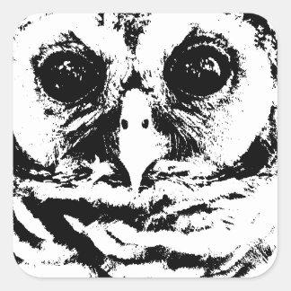 En mayo de 2015 - Owlet Pegatina Cuadrada