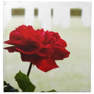 En memoria de un soldado caido servilletas