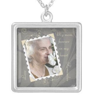 En memoria del collar gris de la foto