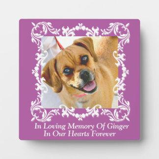 En placa conmemorativa de la foto del mascota cari