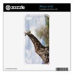 En safari en Tanzania, África Calcomanía Para iPhone 4
