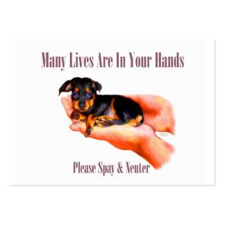 En su tarjeta de visita de las manos (Spay por fav