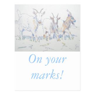 En sus marcas postales