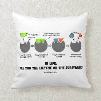 ¿En vida, es usted la enzima o el substrato? Almohada