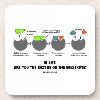 ¿En vida está usted la enzima o el substrato? Humo Posavasos De Bebidas
