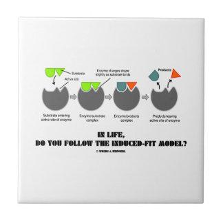 ¿En vida, usted sigue el modelo del Inducir-Ajuste Teja Cerámica