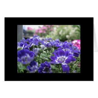 En violeta… tarjeta pequeña