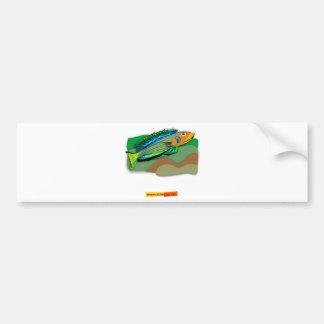 Enantiopus kilesa car bumper sticker