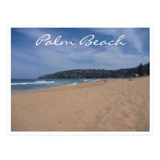 enarena Palm Beach Postales