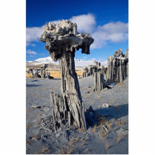 Enarene las formaciones de la toba volcánica, mono esculturas fotográficas