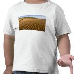 Enarene las ondulaciones y las dunas en la arena camisetas