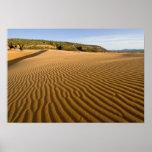 Enarene las ondulaciones y las dunas en la arena r impresiones