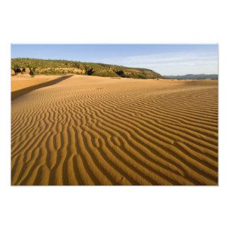Enarene las ondulaciones y las dunas en la arena r fotografía