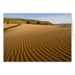 Enarene las ondulaciones y las dunas en la arena r felicitacion