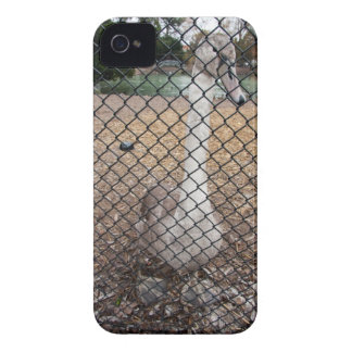Encaged iPhone 4 case Case-Mate iPhone 4 Cases