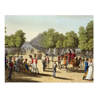 Encampment of the British Army in the Bois de Boul Postcard