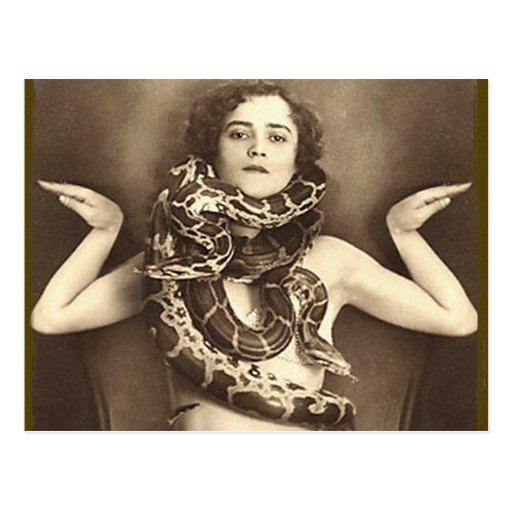 Encantador de serpiente retro del acto secundario tarjeta postal
