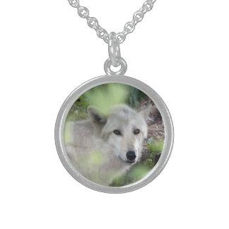 Encanto del lobo collar de plata esterlina