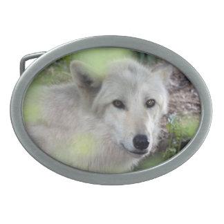 Encanto del lobo hebillas de cinturón ovales