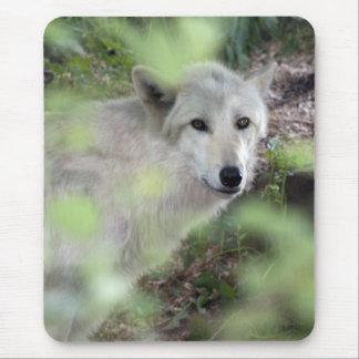 Encanto del lobo tapete de raton