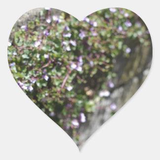 Encanto y romance del Viejo Mundo Calcomanía Corazón Personalizadas