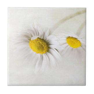 Encantos de la margarita de la flor con su suavida azulejo cuadrado pequeño