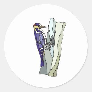 Encargado Woodpecker Pegatinas Redondas
