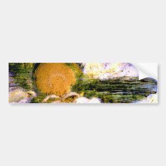 Encausic,Painting,Sky Bumper Sticker