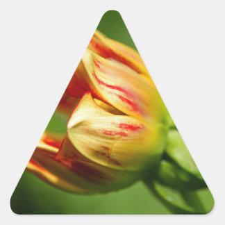 Enchanted Beginnings Triangle Sticker