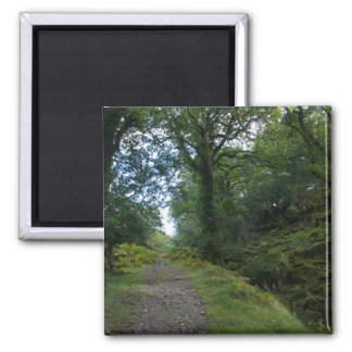 Enchanted Forest 2 Inch Square Magnet