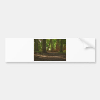 Enchanted Forest Bumper Sticker