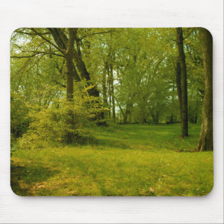 Enchanted forest mouse pad