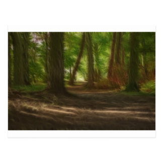 Enchanted Forest Post Cards