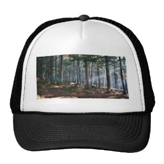 Enchanted Forest Trucker Hat
